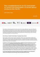 Position paper on forced labour EU policy