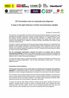 Joint Statement on the EP Committee vote on corporate due diligence
