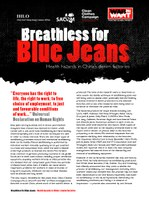 Executive Summary: Breathless for Blue Jeans