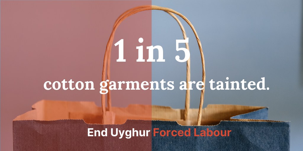 End forced labour in the cotton chain